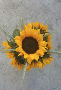 sunflower bouquet from above